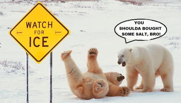 slipping-polar-bear